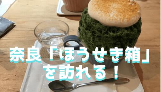 奈良のかき氷屋さん「ほうせき箱」を訪れる